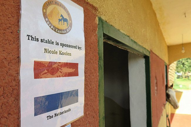 One of our most dedicated supporters, Nicole Koolen from the Netherlands, has sponsored one of the new stables.